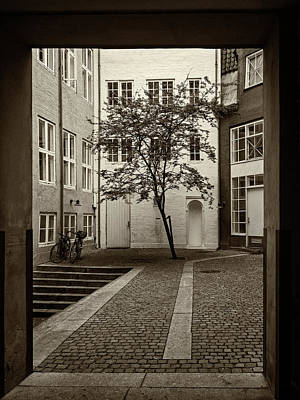 Photograph - The Courtyard - 365-83 by Inge Riis McDonald