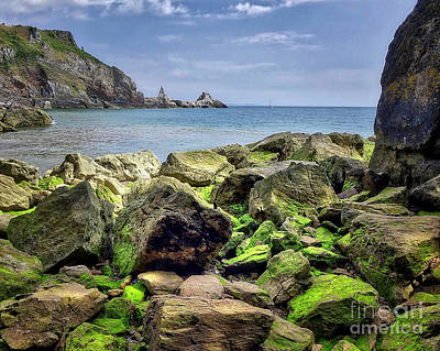 Photograph - The Cove by Edmund Nagele