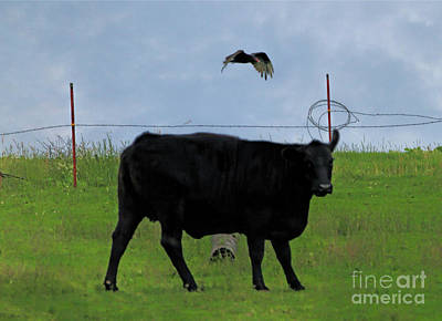 Photograph - The Cow And The Vulture by Elizabeth Winter