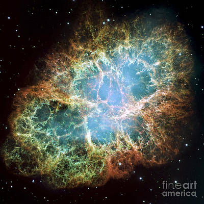 The Crab Nebula Art Print by Stocktrek Images