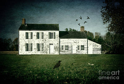 Photograph - The Craig House II by Debra Fedchin