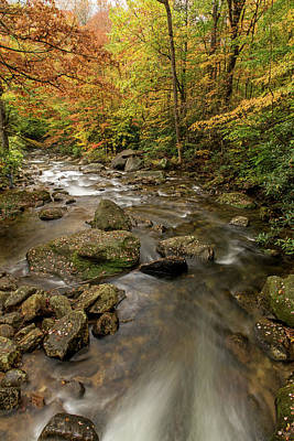 Photograph - The Creek And Its Supporting Cast by Willie Harper