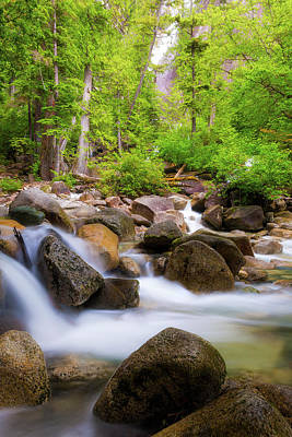Photograph - The Creek Below Shannon Falls by Jit Lim