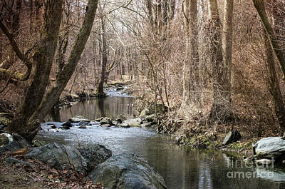 Photograph - The Creek by Judy Wolinsky
