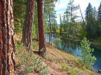 Green Photograph - The Creek by Nancy Harrison