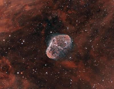 Photograph - The Crescent Nebula by David Watkins