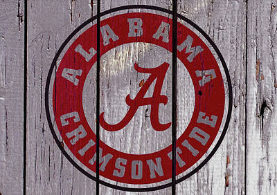 Clemson Mixed Media - The Crimson Tide 02w by Brian Reaves