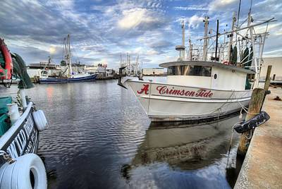 Fresh Shrimp Wall Art - Photograph - The Crimson Tide by JC Findley