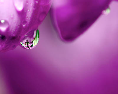 The Cross In Reflective Purple Water Drop Print by Laura Mountainspring