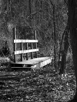 Photograph - The Crossing In The Woods by Sara Raber