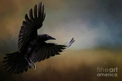 Digital Art - The Crow by Jim Hatch