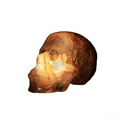 Photograph - The Crystal Skull On Transparent Background by Terri Waters