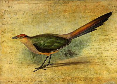 Cuckoo Digital Art - The Cuckoo's Note by Sarah Vernon
