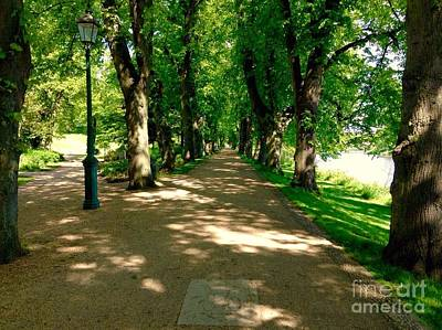 Photograph - The Cycle Path At Avenham Park by Joan-Violet Stretch