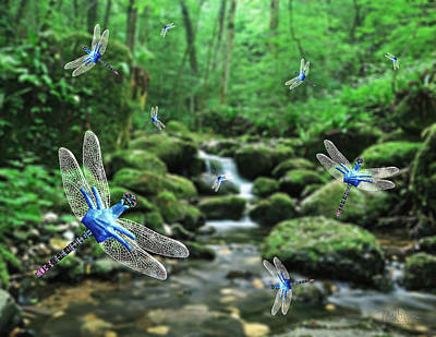 The Dance Of Dragonflies Art Print