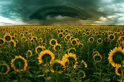 Romania Photograph - The Dark Crown by Adrian Borda