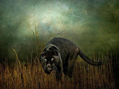 Photograph - The Dark Destroyer by Brian Tarr