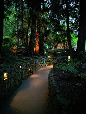 Photograph - The Dark Path At Dusk by Michael Bessler