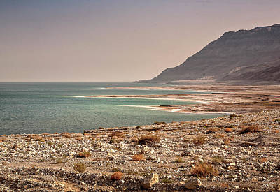 Photograph - The Dead Sea by Endre Balogh