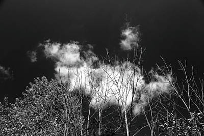 Photograph - The Dead The Living And Clouds Bw by Mary Bedy