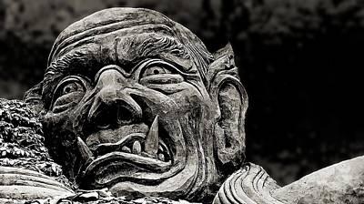 Photograph - The Demon B/w by Ian Gledhill