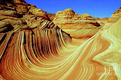 Photograph - The Desert Wave by Roxie Crouch