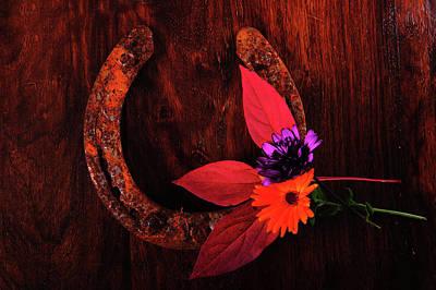 Photograph - The Devil's Shoe by Randi Grace Nilsberg