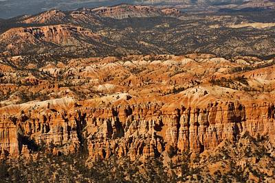 Photograph - The Different Layers Of Bryce - 1 by Hany J
