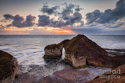Photograph - The Dinosaur, Flamborough Head by Colin and Linda McKie
