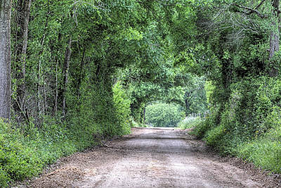 Photograph - The Dirt Road Tunnel by JC Findley
