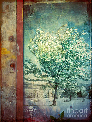 The Door And The Tree Art Print by Tara Turner