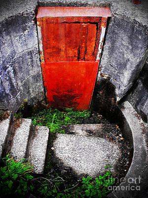 Photograph - The Door Below by Tara Turner