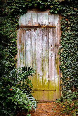 Photograph - The Door by Mark Robert Rogers