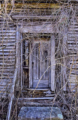 Nature Photograph - The Door To Nowhere by Kathleen Sartoris