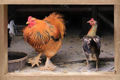 Chicken Mixed Media - The Doorman by Lori Deiter