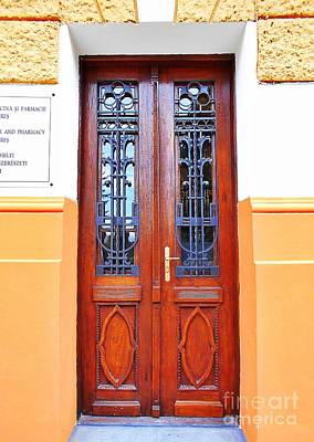 Photograph - The Doorway Of  The University Of Medicine And Pharmacy Of Targu Mures by Erika H