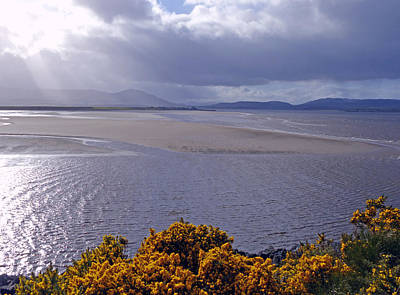 Photograph - The Dornoch Firth by Phil Banks