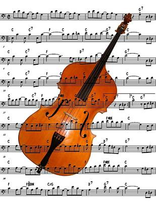 Digital Art - The Double Bass by Ron Davidson