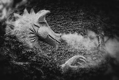 Photograph - The Dragon In The Ivy by Mary Lee Dereske
