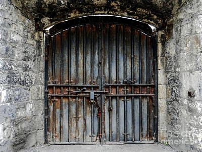 Photograph - The Dreaded Doors by Lexa Harpell