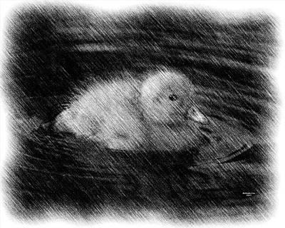 Digital Art - The Duckling by Artful Oasis
