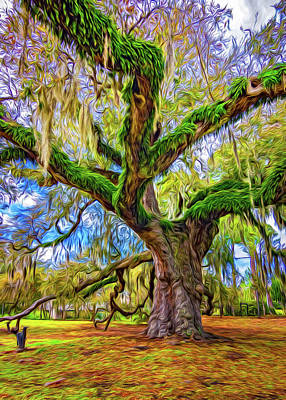 New Orleans Oil Photograph - The Dueling Oak 2 Painted by Steve Harrington