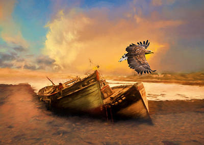 The Eagles Photograph - The Eagle And The Boat by Georgiana Romanovna