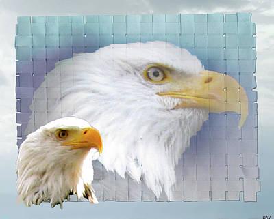 Poer Photograph - The Eagles Focus by Debra     Vatalaro