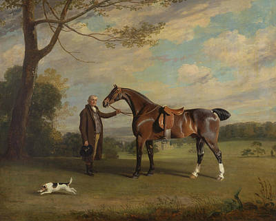 Painting - The Earl Of Shrewsbury's Groom Holding A Hunter by Treasury Classics Art