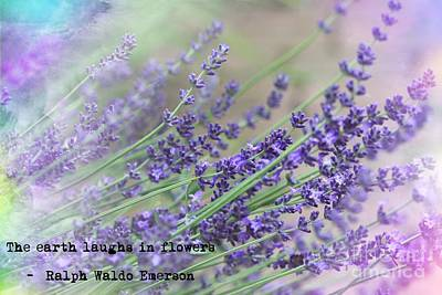 Photograph - The Earth Laughs In Flowers by Mary-Lee Sanders