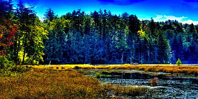 Photograph - The East Shore Of Cary Lake by David Patterson