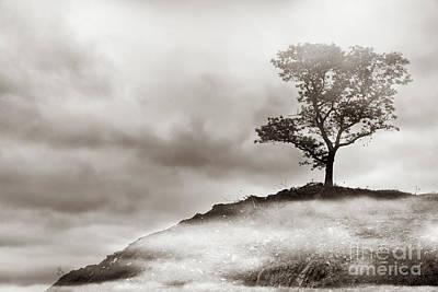 Thomas Kinkade - The Edge of Never by Dana DiPasquale