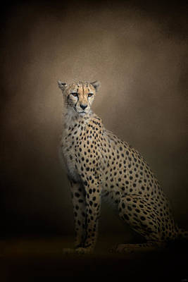 The Elegant Cheetah Art Print