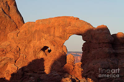Photograph - The Elephant's Trunk by Jim Garrison